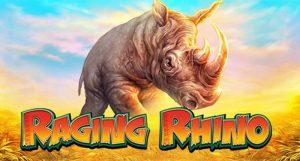 Raging Rhino review