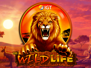 The Wild Life review