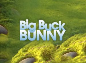 Big Buck Bunny review