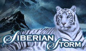 Siberian Storm review