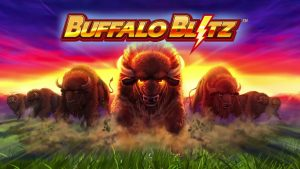 Buffalo Blitz review